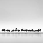 Buble trees